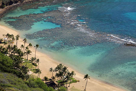 Tropical beach - Hanauma Bay, Oahu, Hawaii 스톡 콘텐츠