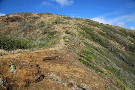The trail on the ridge - Hanauma Bay, Oahu, Hawaii