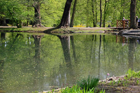 On the pond - Cathedral Park in Gdansk Oliwa, Poland Archivio Fotografico