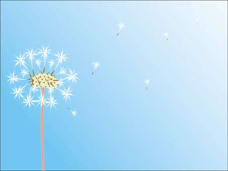 easiness: Dandelion stretches to the sky