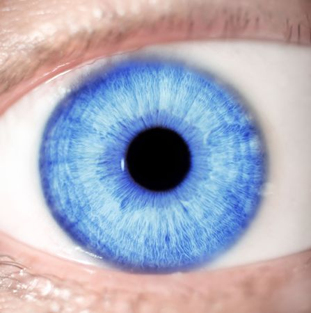 extreme macro shot of a beautiful blue eye