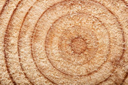 wood cut in hafl, close up abstract shot