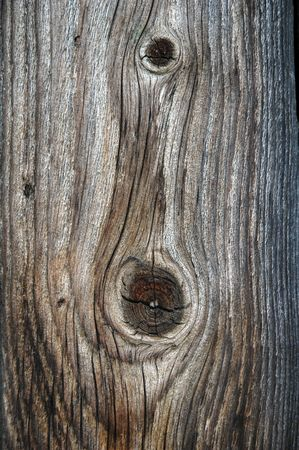 wood texture with natural patterns Stock Photo - 4881201