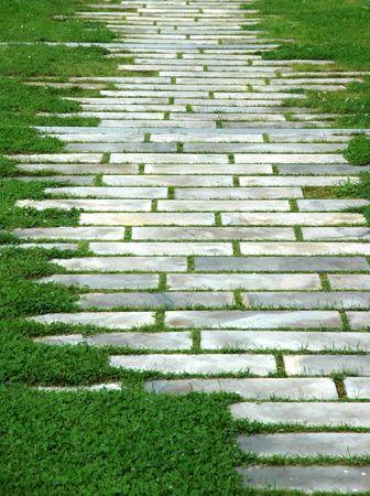 geometric pattern on grass