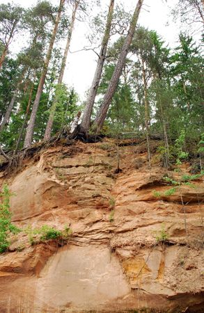 wild abstract sandstone riverbank