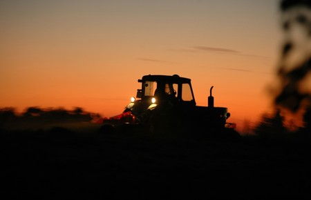 vintage tractor works on field at sunset     Stock Photo