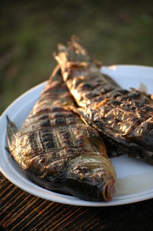 tinca tinca: fish on the grill Stock Photo