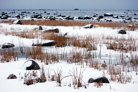 lot of rocks at seaside at winter Stock Photo - 8496851