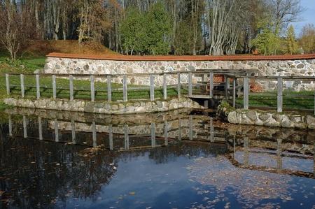 ルーク: 秋の木々 やエストニアのルーク マナーの小さなダム