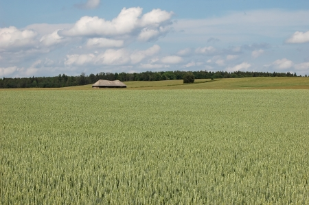 field and farmhouse on agricultural land Stock Photo - 15475880