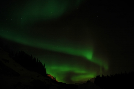 Aurora borealis  northern lights  and lots of stars around the constellation  Big Dipper   photo