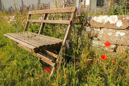 Park bench with poppys in Oland island, Sweden Stock Photo