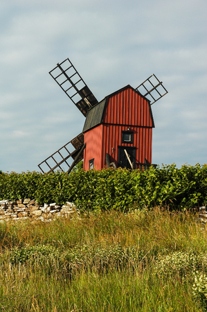 Windmill On Background With Road And Wild Flowers In Oland, Sweden