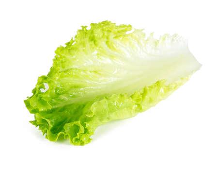 Lettuce leaves isolated on white background