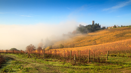 Chianti vineyard landscape in autumn with fog , Abbey of Passignano, Tavarnelle Val di Pesa, Florence, Tuscany, Italy