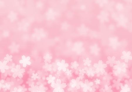 cerisier fleur: pétales de fleurs de cerisier Banque d'images