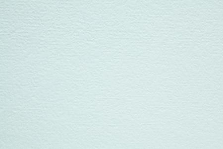 plain paper: Japanese paper