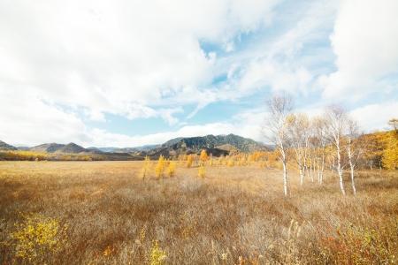 plateau: Senjogahara plateau Stock Photo