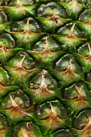 パイナップルのクローズ アップ 写真素材