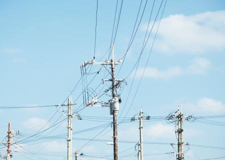 telegraaf: telegraafpool