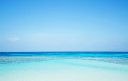 바다 경치