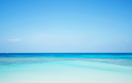 clear blue sky: seascape