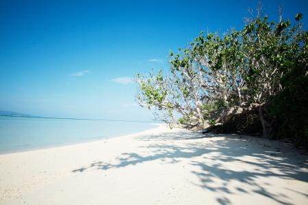 okinawa: seascape