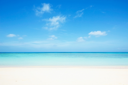 sea green: seascape