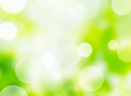 photographic effects: nature bokeh lights
