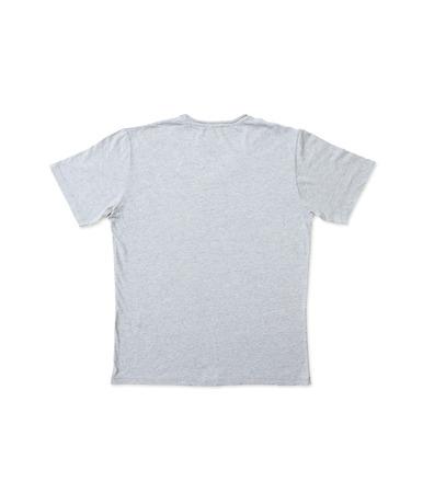 back shots: gray t-shirt