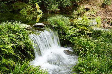 springwater: Ikeyamagensui spring water at Kumamoto prefecture in Japan Stock Photo