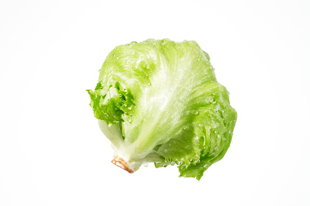 the lettuce with droplets
