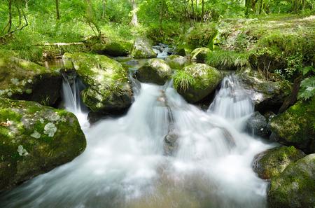 landscape of clear stream Zdjęcie Seryjne