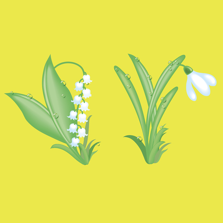 Gentle lilies of the valley and snowdrops on a yellow background