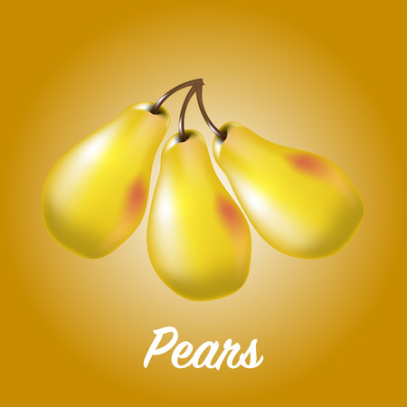 Three fresh realistic pears on a yellow background