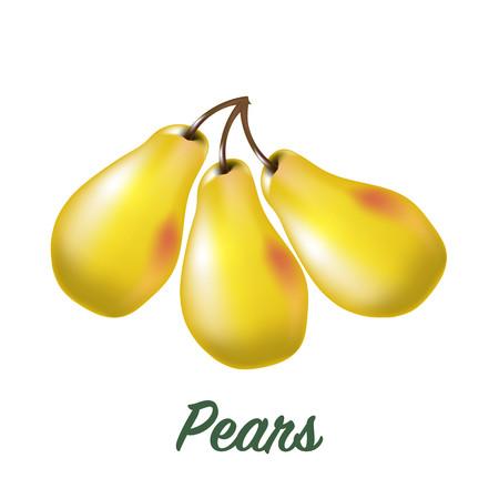 Three fresh realistic pears on white background Stock Photo