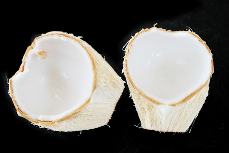 Two half of coconut  Stock Photo - 13542858
