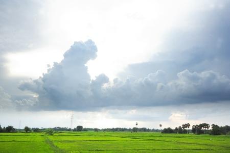 strom: Cloud strom over green field