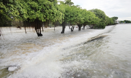 Flood, Water flow over road, tree line background. photo