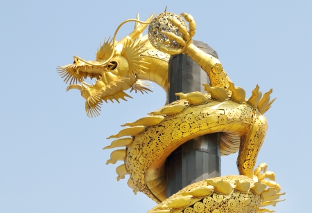 gold  yellow: Gold yellow color steel dragon