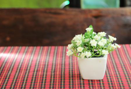 faker: Faker flower on table.