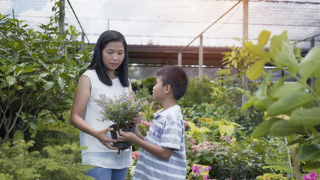 Asian mother and son take care of the trees in the garden. 写真素材