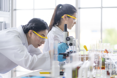Female  scientists are preparing microscopes for testing and analysis through an extension to find the results of medical research. Scientific and chemical concepts
