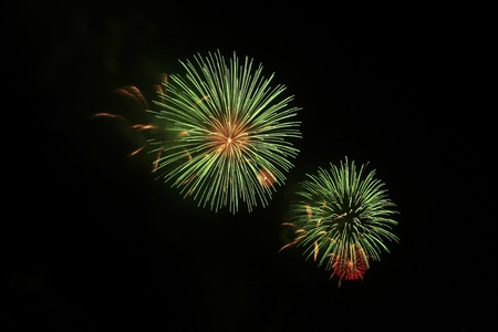 A colorful burst of fireworks in the  sky Stock Photo - 13085681