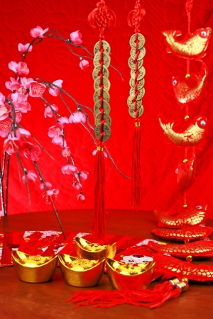decorations for the chinese new year Stock Photo - 17679375