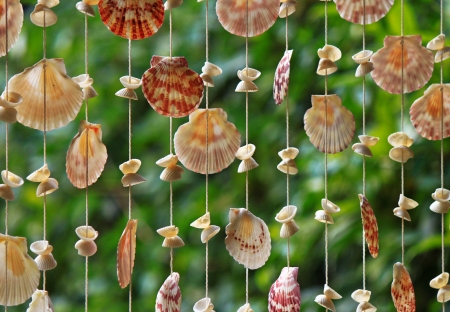Blinds made from the shells of various sizes  Stock Photo - 18210952