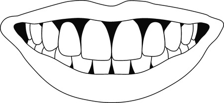 mouth smile: perfect smile with straight teeth
