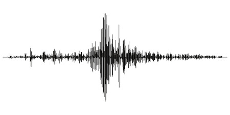 Seismogram of different seismic activity record vector illustration, earthquake wave on paper fixing, stereo audio wave diagram background. seismic tremors sign. Earthquake seismic activity Ilustracja