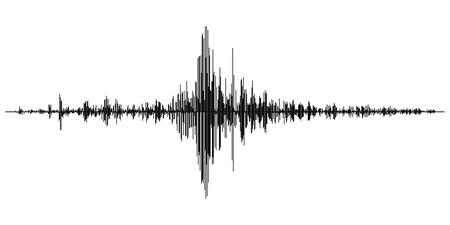 Seismogram van verschillende seismische activiteit record vectorillustratie, aardbeving Golf op papier vaststelling, stereo audio golf diagram achtergrond. seismische tremoren teken. Aardbeving seismische activiteit Stock Illustratie