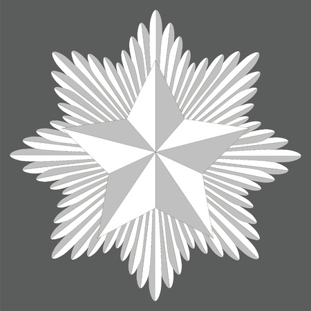 cockade with a pentagonal star, the badge of the swords in a circle, in the center a five pointed star, vector